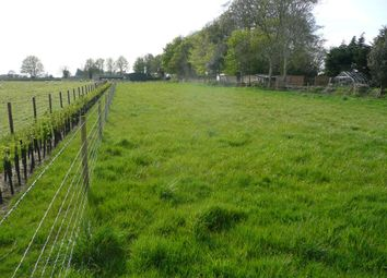 Thumbnail Equestrian property for sale in Donhead St. Mary, Shaftesbury, Wiltshire
