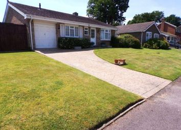 Thumbnail 2 bed bungalow for sale in Midhurst, West Sussex