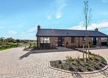 Thumbnail 2 bed semi-detached bungalow for sale in Manor Farm Close, West Street, Cliffe.