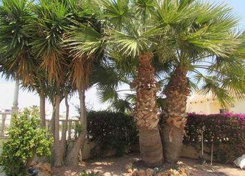 Thumbnail 4 bed villa for sale in 03189 Los Dolses, Alicante, Spain