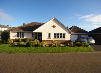 Thumbnail 2 bed bungalow for sale in The Cedars, Minehead