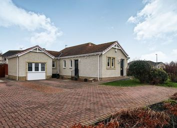 Thumbnail 4 bed bungalow for sale in Osprey Road, Montrose