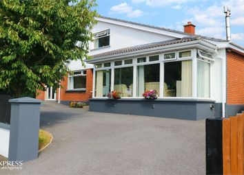 Thumbnail 5 bed detached house for sale in Sutton Gardens, Londonderry