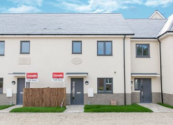 Thumbnail 3 bed town house for sale in Priory Street, Colchester