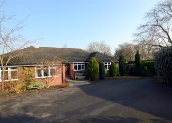 Thumbnail 5 bed detached bungalow for sale in Lime Avenue, Duffield, Belper