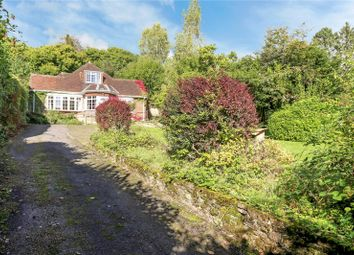 Thumbnail 4 bed detached house for sale in Mill Lane, Steep, Petersfield, Hampshire