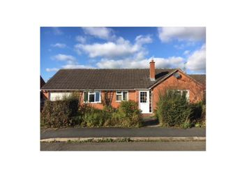 Thumbnail 3 bed detached bungalow to rent in The Meads, Kington