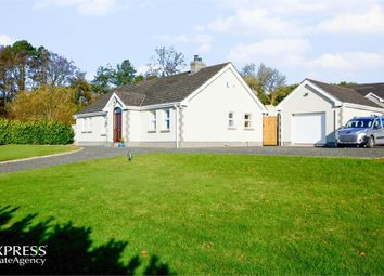 Thumbnail 4 bed detached bungalow for sale in Tully Road, Dunnyvadden, Ballymena, County Antrim