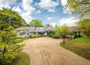Thumbnail 5 bed bungalow for sale in Crest Hill, Peaslake, Guildford