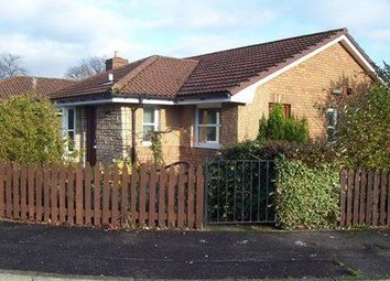 Thumbnail 2 bed detached house to rent in Jacobson Terrace, Dundee