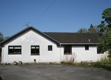 Thumbnail 4 bed detached bungalow for sale in Old Minnigaff, Newton Stewart