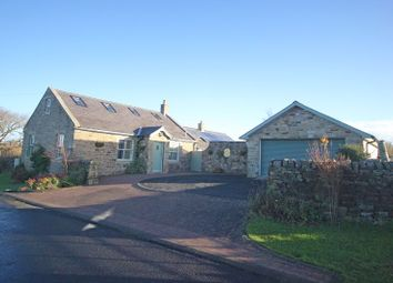 Thumbnail 4 bed detached house for sale in Allendale, Hexham