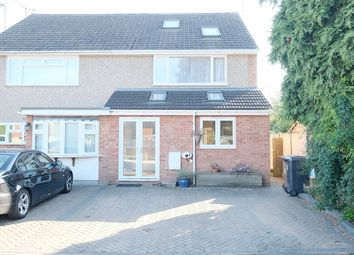 Thumbnail 4 bed semi-detached house to rent in Johnson Road, Great Baddow, Chelmsford