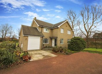 Thumbnail 4 bed detached house to rent in West View, Wideopen, Tyne And Wear