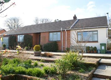 Thumbnail 2 bed detached bungalow for sale in Pentrecagal, Newcastle Emlyn
