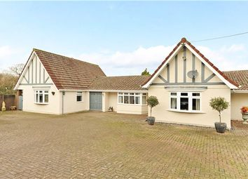 Thumbnail 4 bed detached bungalow for sale in Sunningdale, 32 Dundry Lane, Dundry, Bristol