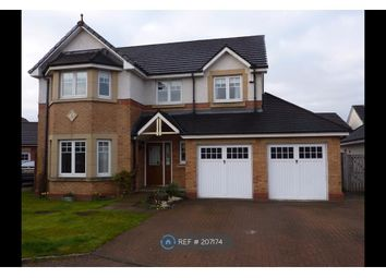 Thumbnail 4 bed detached house to rent in Finlayson Place, Larbert