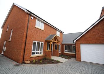 Thumbnail 5 bedroom detached house to rent in Swallow Close, Olney