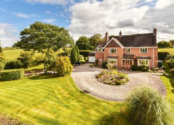 Thumbnail 4 bed detached house for sale in Marcle Road, Dymock, Gloucestershire