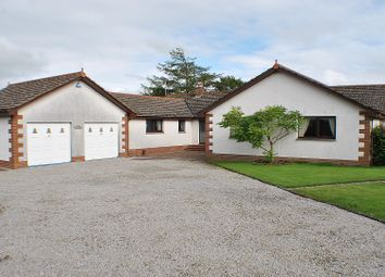 Thumbnail 4 bed bungalow for sale in Sweet Dreams, Off Maiden Row, Crocketford