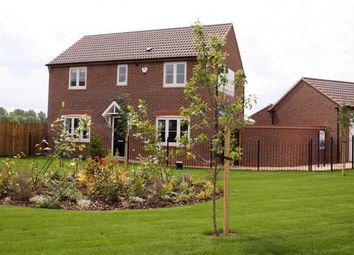 Thumbnail 4 bedroom detached house for sale in Beeby Road, Scraptoft