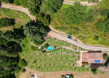 Thumbnail 3 bed barn conversion for sale in Trine, Barga, Lucca, Tuscany, Italy