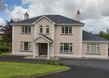 Thumbnail 4 bed detached house for sale in Tullow, Newport, Tipperary