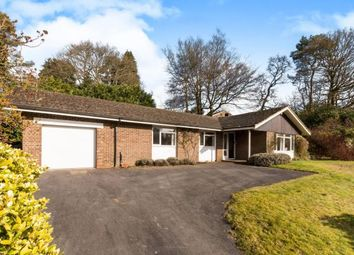 Thumbnail 4 bed bungalow for sale in Hindhead, Surrey, United Kingdom