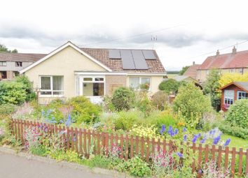 Thumbnail 1 bedroom terraced bungalow for sale in Dowlas Court, Pitlessie, Cupar