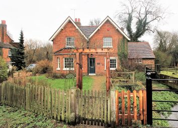 Thumbnail 4 bed detached house to rent in Mill Green, Hatfield