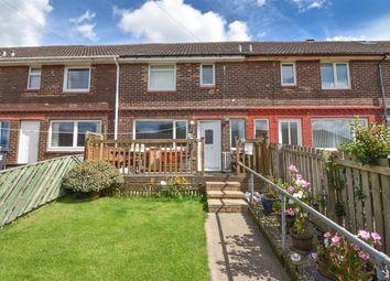 Thumbnail 2 bedroom terraced house for sale in Norman Terrace, Consett
