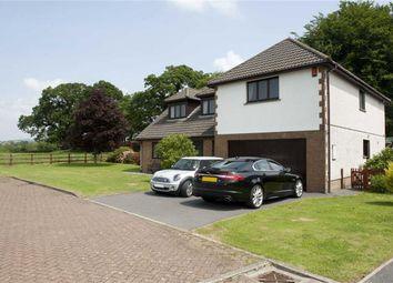 Thumbnail 5 bed detached house for sale in Golwg Y Twr, Llanarthney, Llandeilo