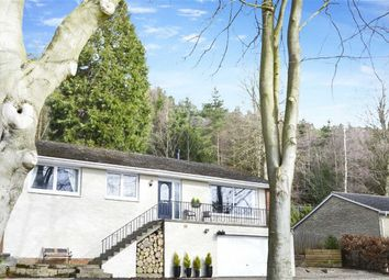 Thumbnail 3 bed bungalow for sale in Hillside, Rothbury, Morpeth