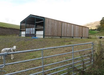 Thumbnail Land for sale in Grazing Paddock & Shed, Wiston