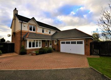 Thumbnail 4 bed detached house for sale in Rowan Crescent, Menstrie