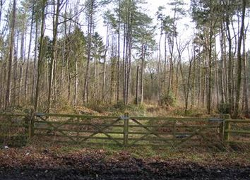 Thumbnail Leisure/hospitality to let in Woodland, Hoar Cross, Burton Upon Trent, Staffordshire