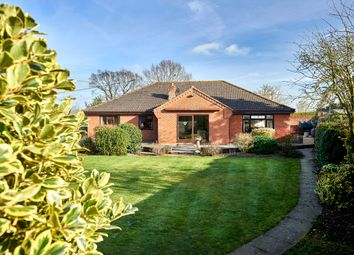 Thumbnail 4 bed detached bungalow for sale in The Lodge, Harleston Road, Weybread