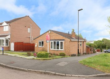 Thumbnail 2 bed detached bungalow for sale in Bedgebury Close, Sothall, Sheffield