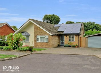 Thumbnail 4 bed detached bungalow for sale in Greenlands Road, Kingsclere, Newbury, Hampshire