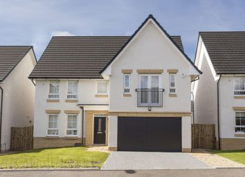 "Thumbnail 4 bed detached house for sale in ""Colvend"" at Liberton Gardens, Liberton, Edinburgh"