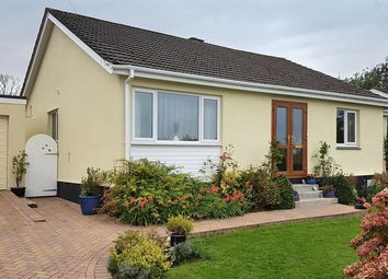 Thumbnail 3 bed detached bungalow to rent in Forth Noweth, Carnon Downs, Truro