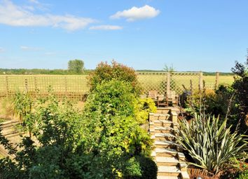 Thumbnail 4 bed property to rent in Moorland Gate, Ringwood, Hants