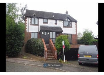 Thumbnail 4 bed detached house to rent in Ipswich, Ipswich