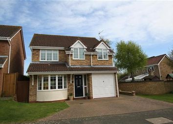 Thumbnail 4 bedroom detached house for sale in Taylors Field, Dullingham, Newmarket