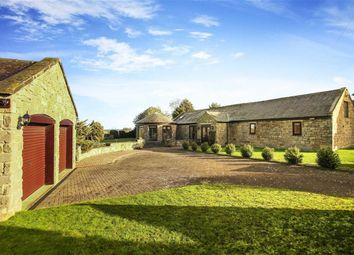 Thumbnail 3 bed bungalow for sale in Higham Dykes, Milbourne, Northumberland
