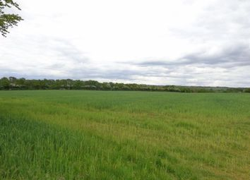 Thumbnail Land for sale in Evershill Lane, Morton, Alfreton