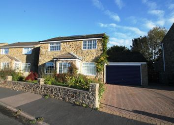 Thumbnail 4 bedroom detached house for sale in Auckland View, High Etherley, Bishop Auckland