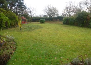 Thumbnail 3 bed detached bungalow for sale in Sheilens, Hyde, Wareham