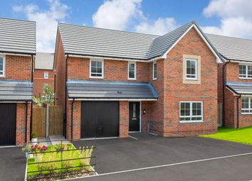 "Thumbnail 4 bedroom detached house for sale in ""Hale"" at Pewterspear Green Road, Appleton, Warrington"