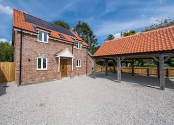 Thumbnail 4 bed detached house for sale in Silt Road, Nordelph, Downham Market, Norfolk